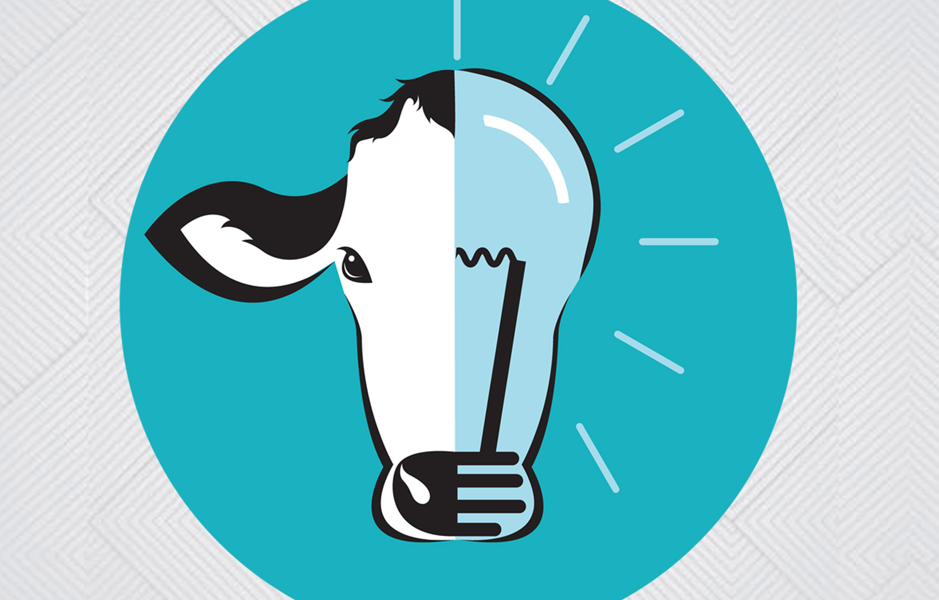Logo Designer Cork. Business logo design Cork. Logo design ideas. Clever logo design.